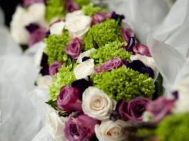 Purple, Green & Cream