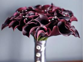 Purple Swartz